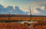 Jock River At Sunrise 09026