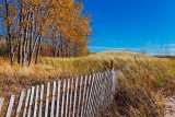 Autumn Dunes 09150