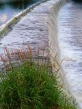 Edmonds Dam P1010085