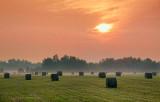 Sunrise Bales 18242-3