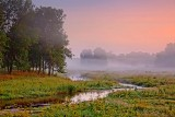 Dawn Landscape 18632-4
