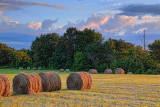 Bales At Sunrise 20195