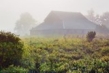 Barn In Fog 20100811