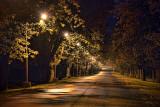 Lighted Laneway 20738