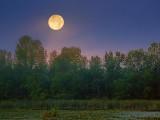 Setting Moon 21114-6