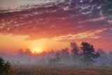 Foggy Sunrise Landscape 21190