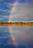 Rainbow Reflected 21267
