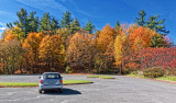 Autumn Parking Lot 24047
