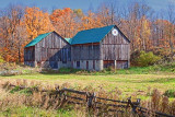 Autumn Barn 24195