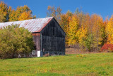 Autumn Barn 23582