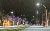 Snowy Beckwith Street 02563-70