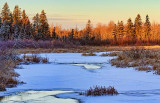 Freezing Brassils Creek 20101217
