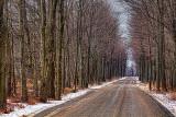 Cove Road In Winter 04223