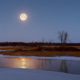 Winter Moonset 05004-6