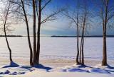Frozen Ottawa River 20110130