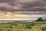 Gulf Of Saint Lawrence Dawn 27012