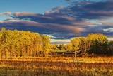 Sunset Landscape 28171