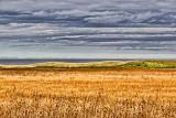 PEI Landscape 27049