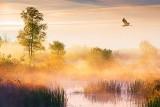 Misty Hutton Creek 20120928