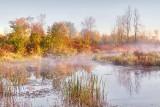 Hutton Creek At Sunrise 28313