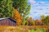 Autumn Landscape 28648