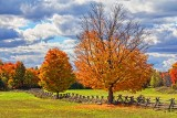 Autumn Landscape 29324