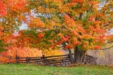 Autumn Landscape 29492