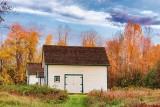 Autumn Scene 29372