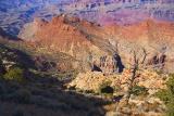 Grand Canyon 29960