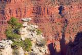 Grand Canyon 30063