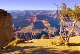 Grand Canyon 30101