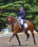 Dressage Horse2