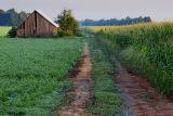 Old Barn 39113