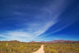 Road to the Ajo Mountains 82914