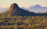 Mountain Vista 82847