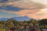 Desert Scene 84786