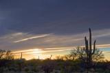Desert Sunset 87010
