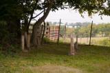 Somerset Lane Cemetery