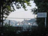 20060718 069.jpg