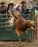 Bull Riding I