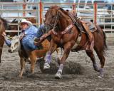 Steer Wrestling I