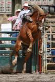 Bareback Riding II
