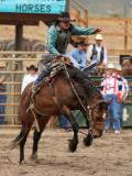 Saddle Bronc II