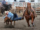 Steer Wrestling V