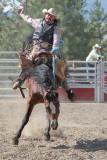 Saddlebronc Rider