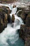 Sunwapta Falls (Portrait)