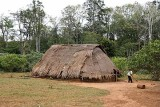 Traditional Phnong house in Dak Dam Village, Mondulkiri, Cambodia