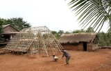Scaffolding for a traditional Phnong house. Pu Lang Village II, Mondulkiri, Cambodia