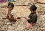 Phnong children in a paddy field. Pu Lang Village II, Mondulkiri, Cambodia