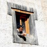 Boy in a window in Kibber Spiti